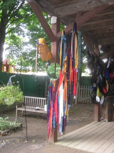 The Jester hat tree, NY